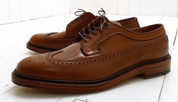 Alden Long Wing Blucher