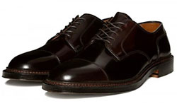 Alden Straight Tip Blucher Footwear