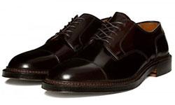 Alden Straight Tip Blucher Footwear