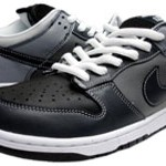 Nike Dunk Low Premium Footwear