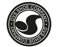 DVS Official Logo of the Company