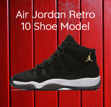 Air Jordan Retro 10 Shoe Model